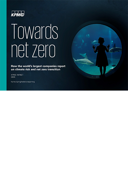 towards-net-zero-450x660